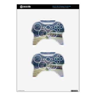 farming plain scenery  rice field planation xbox 360 controller skins