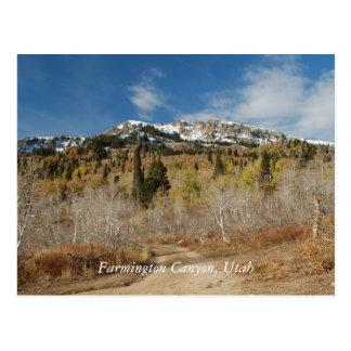 Farmington Canyon, Utah Postcard