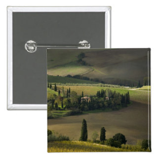 Farmland around Montepulciano, Tuscany, Italy Button