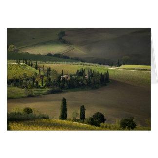 Farmland around Montepulciano, Tuscany, Italy Greeting Card