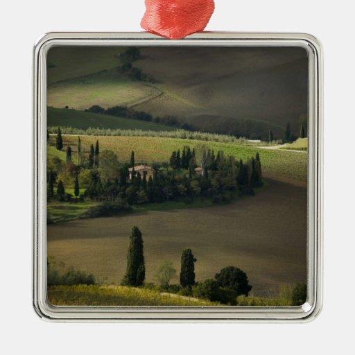 Farmland around Montepulciano, Tuscany, Italy Christmas Tree Ornaments