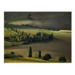 Farmland around Montepulciano, Tuscany, Italy Postcard