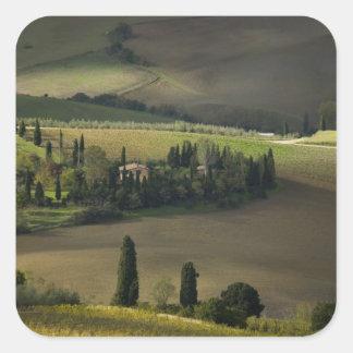 Farmland around Montepulciano, Tuscany, Italy Square Sticker