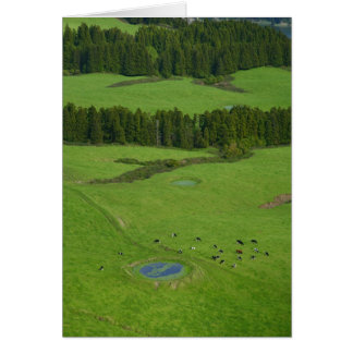 Farmland in Azores islands Greeting Cards
