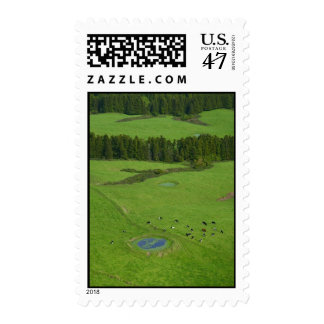 Farmland in Azores islands Stamp
