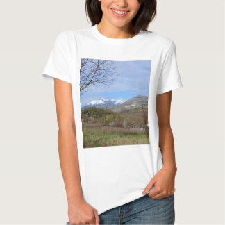 Farmland In Winter In Calabria T-Shirt