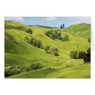 Farmland near Gisborne, New Zealand Greeting Cards