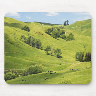 Farmland near Gisborne, New Zealand Mouse Pad