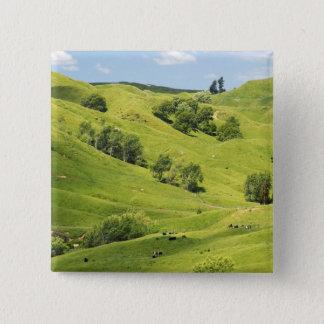Farmland near Gisborne, New Zealand Pinback Button