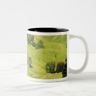 Farmland near Gisborne, New Zealand Two-Tone Coffee Mug