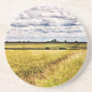Farmland Rural Landscape HDR Beverage Coasters