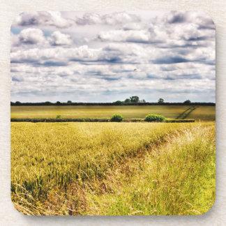 Farmland Rural Landscape HDR Coasters