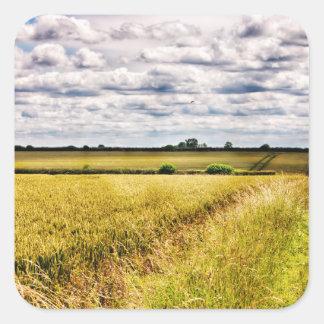 Farmland Rural Landscape HDR Square Sticker