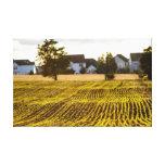 Farmland Stretched Canvas Prints