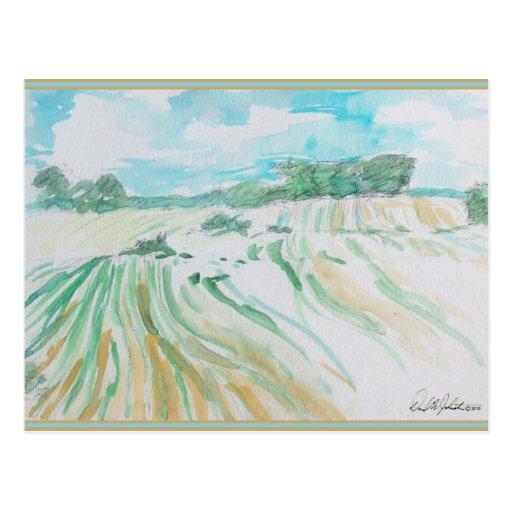 Farmland Watercolor Postcard