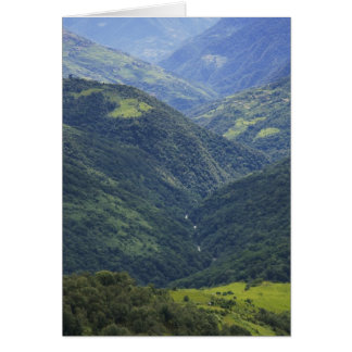 Farmlands and Himalaya forest in Mangdue valley Cards
