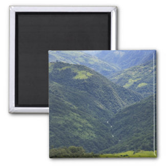 Farmlands and Himalaya forest in Mangdue valley Fridge Magnets