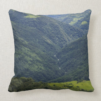 Farmlands and Himalaya forest in Mangdue valley Pillow