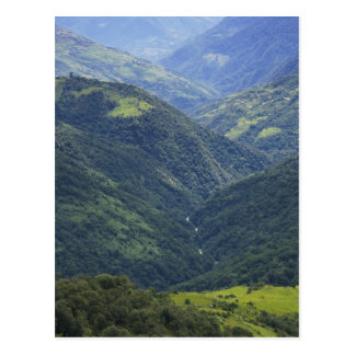 Farmlands and Himalaya forest in Mangdue valley Postcard