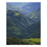 Farmlands and Himalaya forest in Mangdue valley Poster