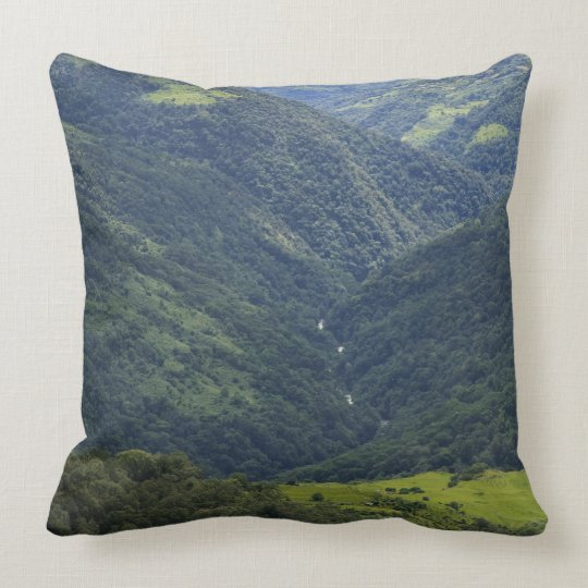 Farmlands and Himalaya forest in Mangdue valley Throw Pillow