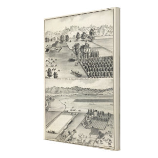 Farms, Capay Valley, Madison Canvas Print