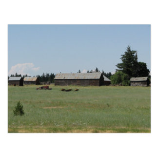 Farmstead, Friend, Oregon Postcard