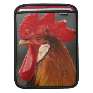 Farmyard Domestic Rooster Sleeve For iPads