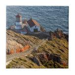 Faro en la costa del nacional de Reyes del punto Azulejo Cuadrado Pequeño