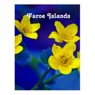Faroe Islands Postcard