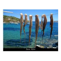 Faros- Sifnos Postcard