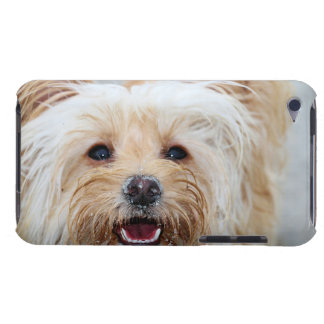 Farris - Lucy - Mixed Breed iPod Touch Case