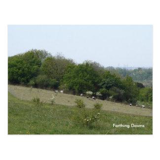 Farthing Downs, London: Postcard