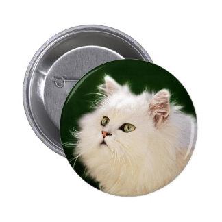 Fascinación de los gatitos pin redondo de 2 pulgadas