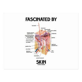 Fascinado por la piel capas de la piel tarjetas postales