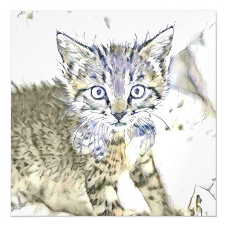 fascinating altered animals - Kitten Magnetic Card