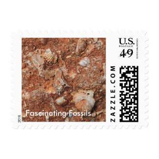 Fascinating Fossils Postage