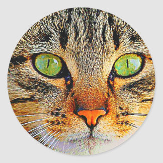 Fascinating Green Eyed Cat Classic Round Sticker