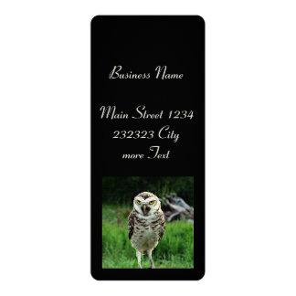 fascinating Owl 4x9.25 Paper Invitation Card