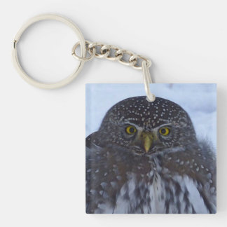 fascinating owl Double-Sided square acrylic keychain