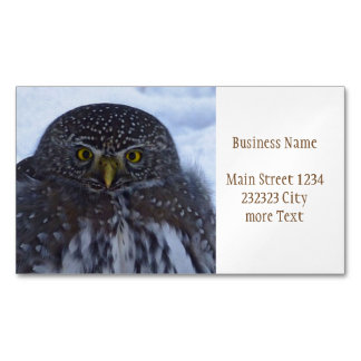 fascinating owl magnetic business card