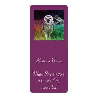 fascinating Owl, rainbow 4x9.25 Paper Invitation Card