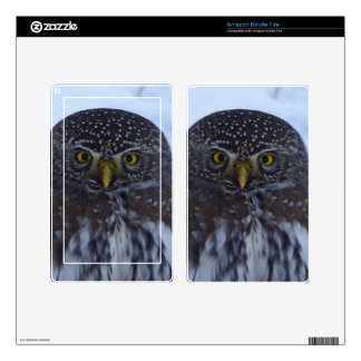 Fascinating Owl Skin For Kindle Fire