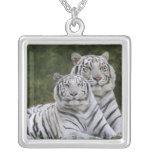 Fase blanca, tigre de Bengala, el Tigris Colgante Personalizado
