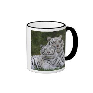 Fase blanca, tigre de Bengala, el Tigris Taza De Dos Colores