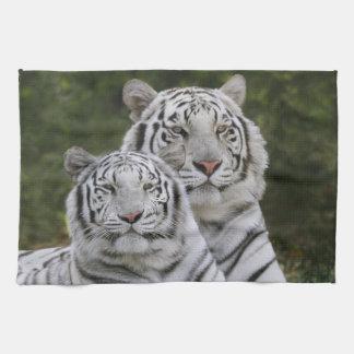 Fase blanca, tigre de Bengala, el Tigris Toalla