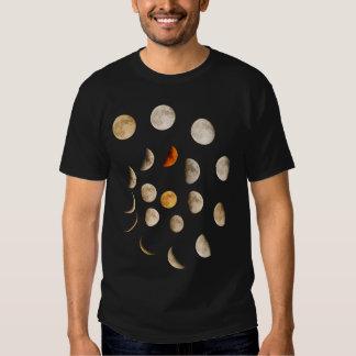 Fases del espiral de la luna polera