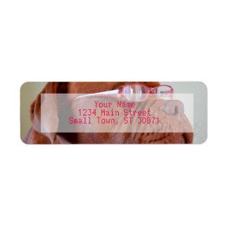 Fashion Dogue de Bordeaux Return Address Label