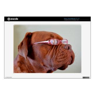 Fashion Dogue de Bordeaux Skins For Acer Chromebook