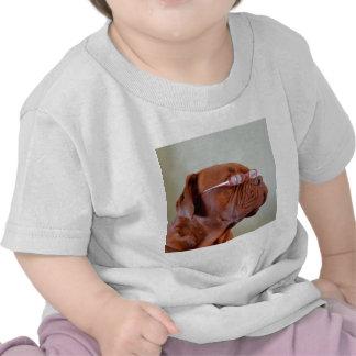 Fashion Dogue de Bordeaux T Shirt